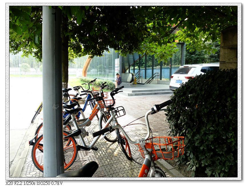 迎賓廣場地鐵站口,各種共享單車
