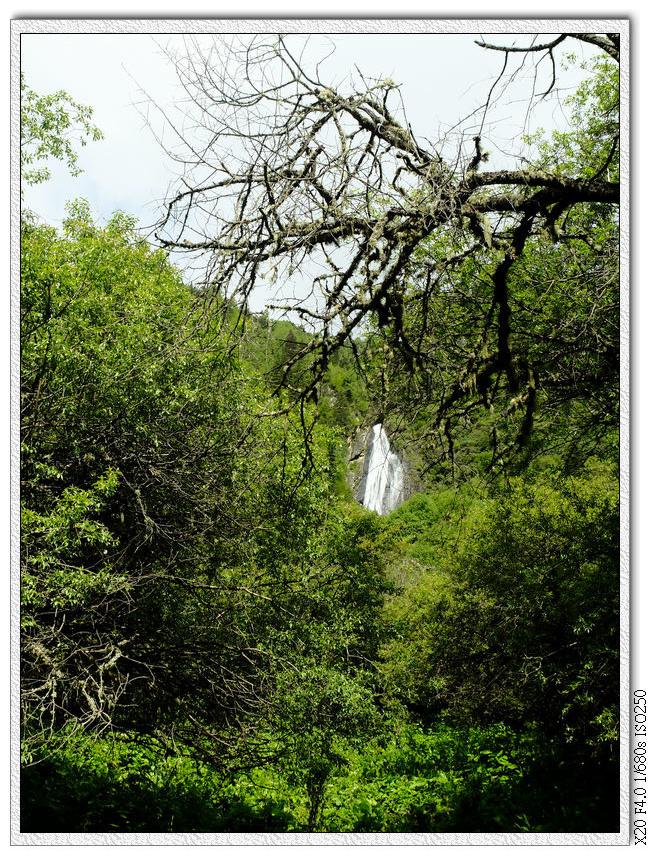 這個瀑布遠遠看就好不走過去了