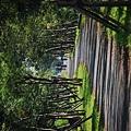 宜蘭民宿  三月三旅店  推薦宜蘭旅遊景點-  冬山河自行車道(冬山車站至大甲門)