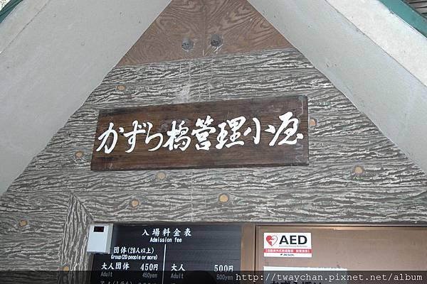 DSC_3901.JPG