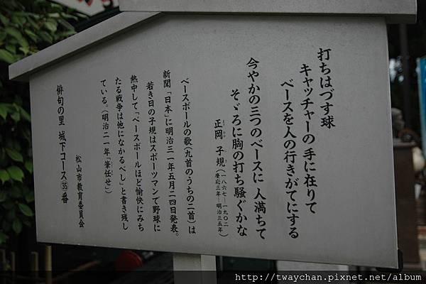 DSC_4519.JPG