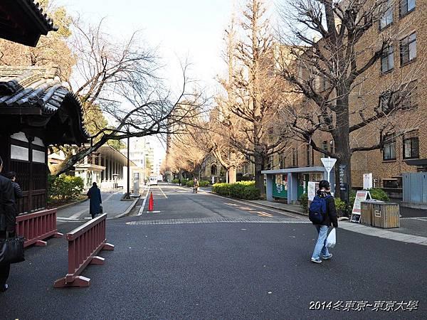 DSC_7233.jpg