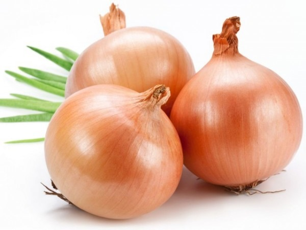 All-About-Onions-on-TheShiksa.com-history-cooking-tutorial-640x480-600x450.jpg
