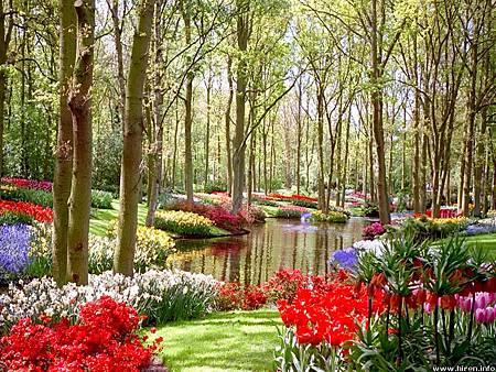 garden-and-flowers.jpg