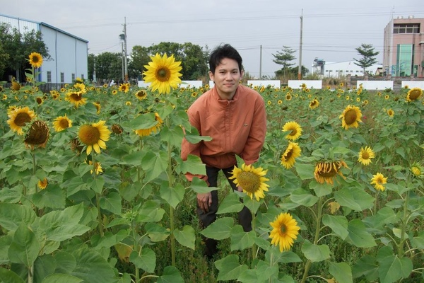 Sunflower-11.jpg