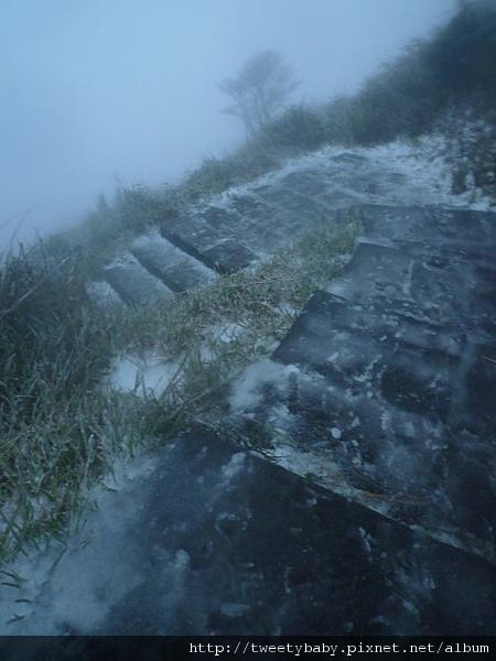 七星山下雪了 169.JPG