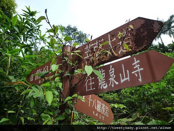 十八羅漢奇岩 006.JPG