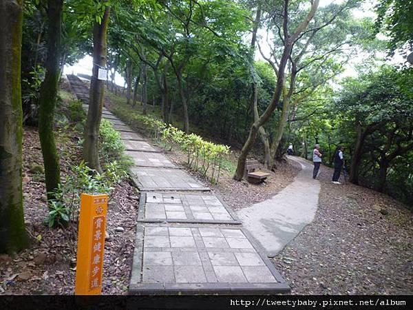 虎頭山公園.三分山.五分山.虎頭山 081.JPG