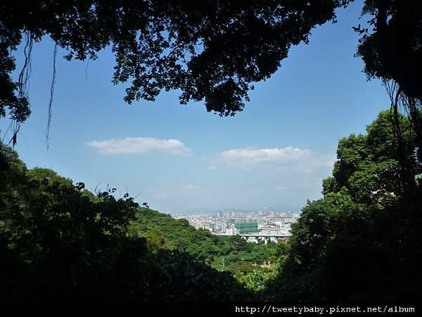 新莊青年公園2 011.JPG