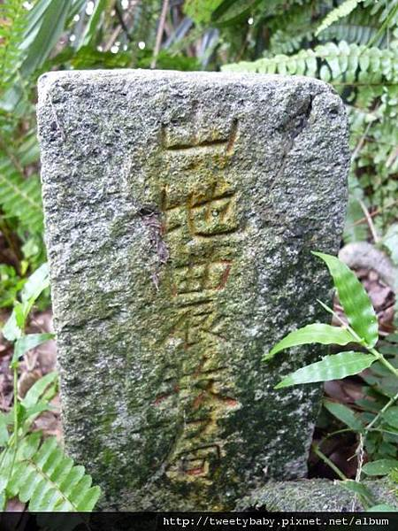 飛鳳山.三玄台.九華山 139.JPG