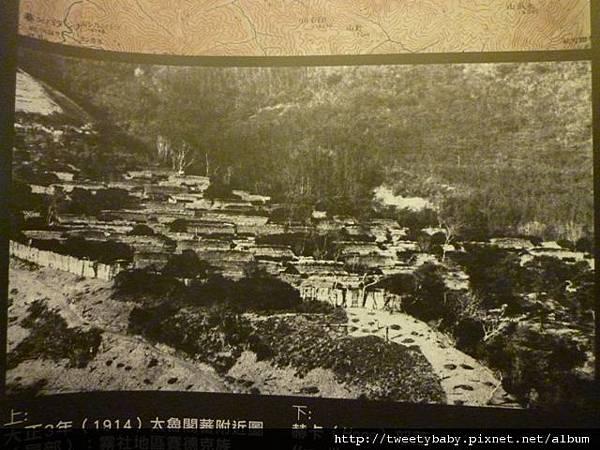 國立台灣博物館 030.JPG