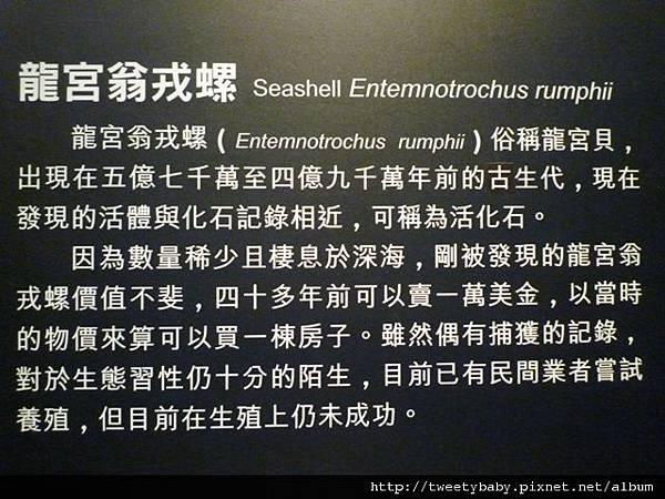 國立台灣博物館 060.JPG