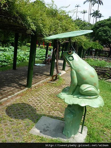 植物園隨意行 298.JPG