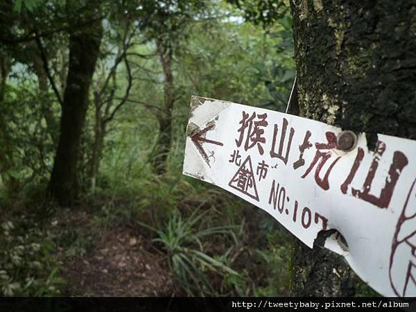 石泉巖.大前坑山.猴山坑山 048.JPG