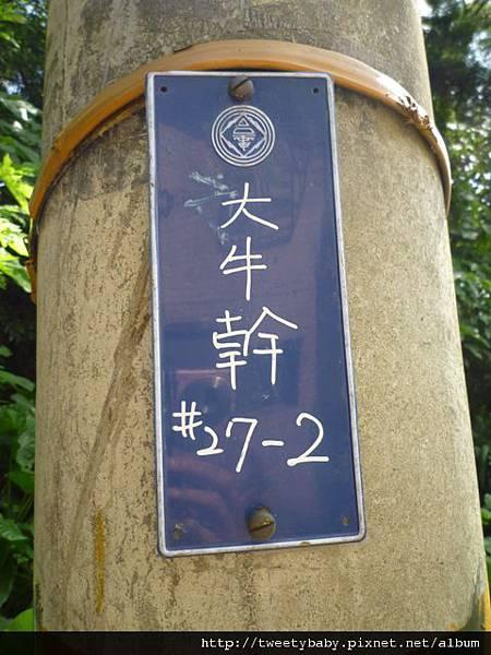 大牛山 021.JPG