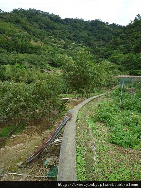 猴山坑古道.祥光寺 038.JPG