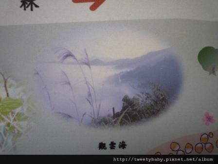 雲海國小.十三股山.粗坑崙.埤腹山 037.JPG