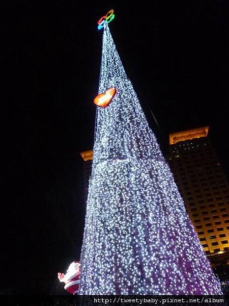 新北市政府聖誕樹 018.JPG