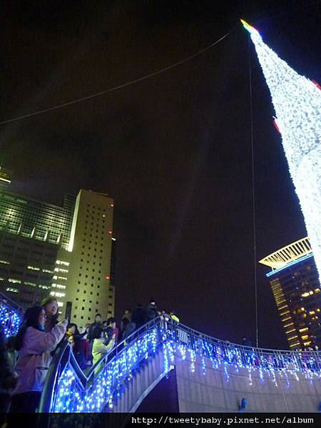 新北市政府聖誕樹 021.JPG