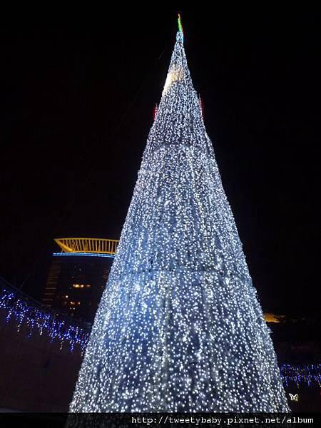 新北市政府聖誕樹 023.JPG