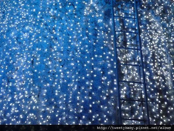 新北市政府聖誕樹 036.JPG