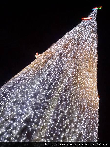 新北市政府聖誕樹 047.JPG