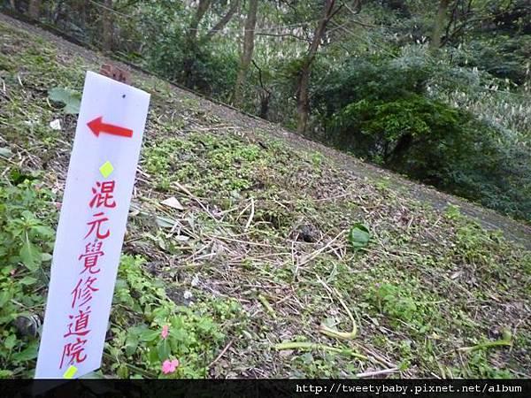 雙港子山 086.JPG