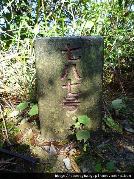 五指山.友蚋山 122.JPG