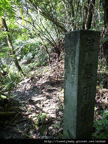 五指山.友蚋山 139.JPG