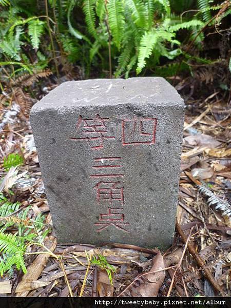 光武山.稻香山.貴子坑山.法蘭克 143.JPG