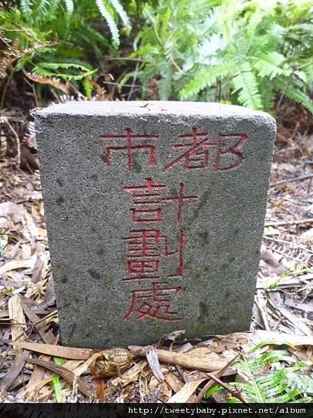 光武山.稻香山.貴子坑山.法蘭克 146.JPG