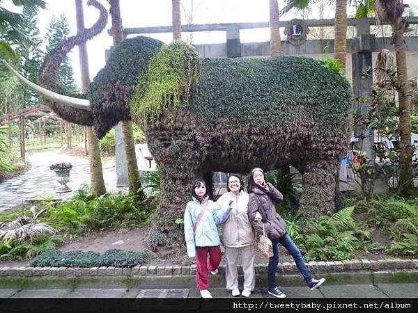 木柵動物園.動物園山 086