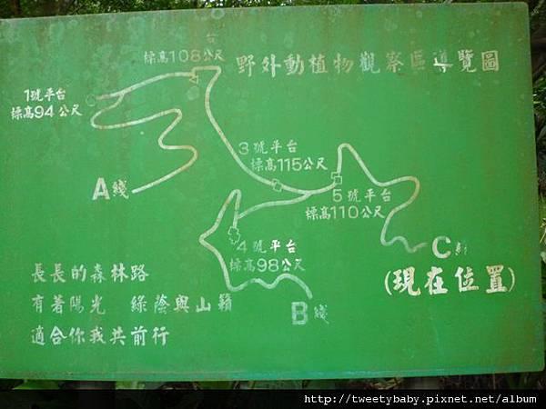 木柵動物園.動物園山 092