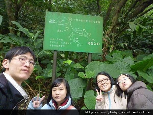 木柵動物園.動物園山 134