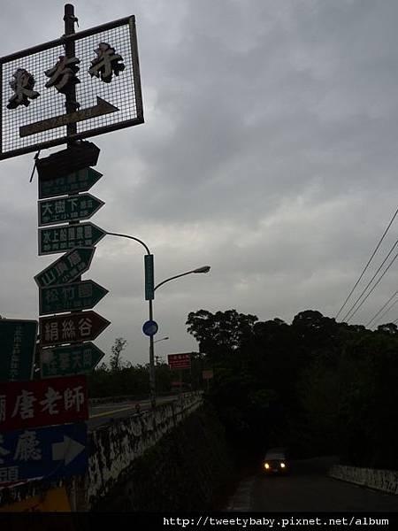 東方寺吉野櫻 002
