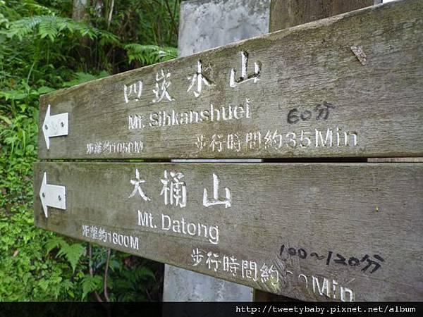 大桶山東峰.大桶山.四崁水山 011