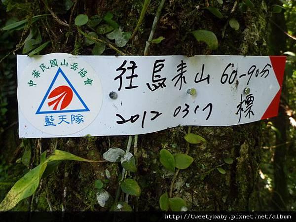 大桶山東峰.大桶山.四崁水山 076