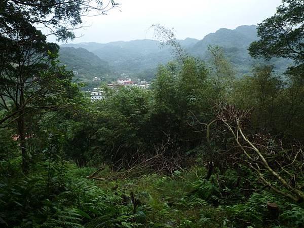 串空湖古道.九芎坑山 052