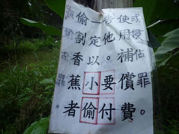 串空湖古道.九芎坑山 054