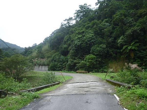 串空湖古道.九芎坑山 097