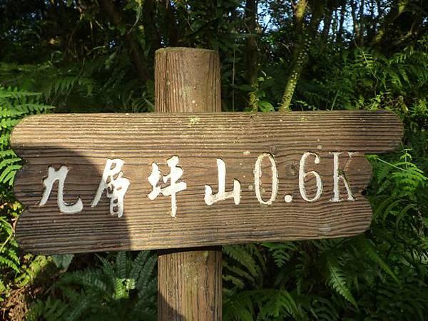 福安山.四分尾山.九層坪山.大尖山賞櫻 054