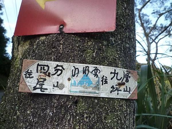 福安山.四分尾山.九層坪山.大尖山賞櫻 091
