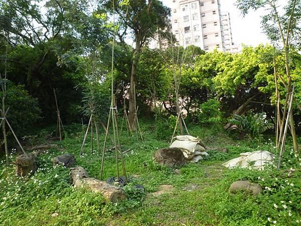 木柵國小台北州第九号基石.繞階玉樹 040