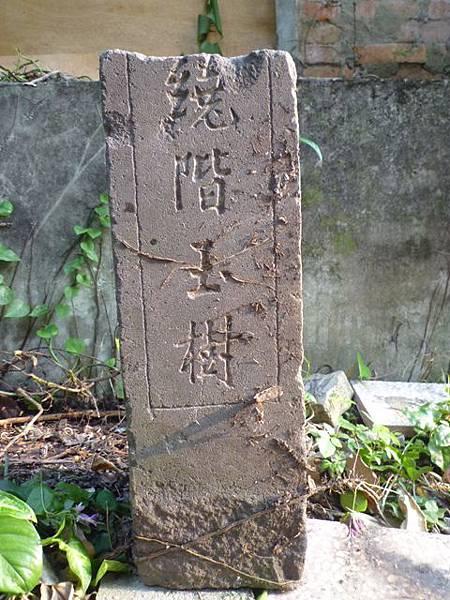 木柵國小台北州第九号基石.繞階玉樹 063