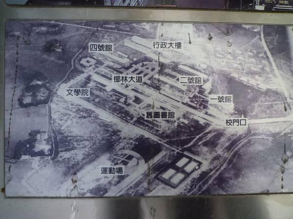 台大賞杜鵑.芳蘭山 066