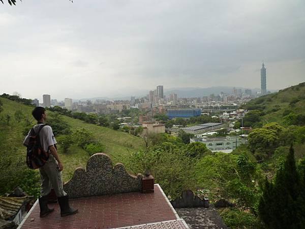 台大賞杜鵑.芳蘭山 136