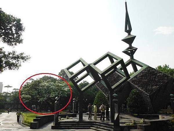 台北二二八公園流蘇.古蹟 036