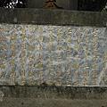 蔣渭水先生墓 047