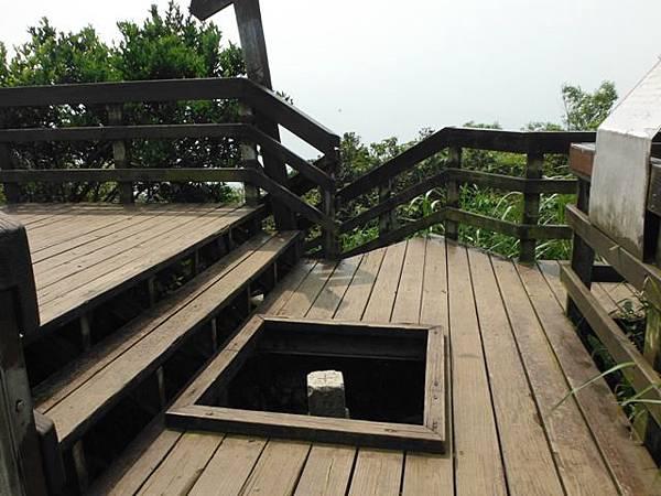 天上山賞桐巧遇五色鳥、早安登山 027
