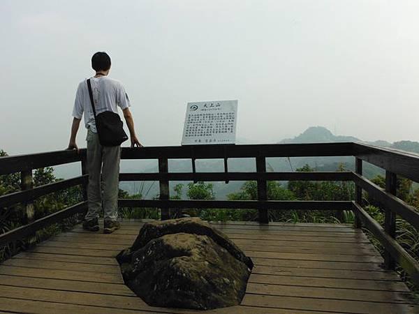 天上山賞桐巧遇五色鳥、早安登山 033